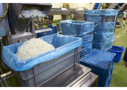 Food grade bin solution PROVOST